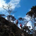 250 Pendaki Siap Jajal Jalur Timur Latimojong