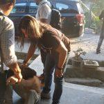 Tikam Anak Polisi, DPO Polres Nabire Diamankan di Palopo