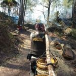 Kebakaran Hutan Pinus di Bastem Utara Kian Meluas, Legislator PDIP Luwu Ikut Padamkan Api