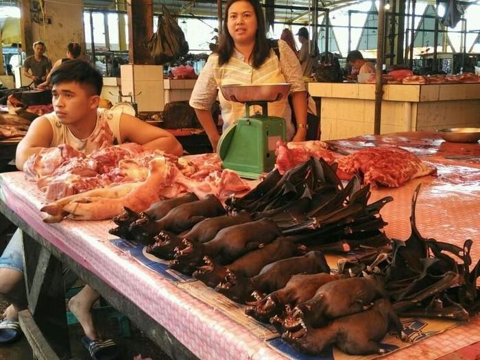 Pasar Ekstrem Di Tomohon Rawan Tularkan Virus Corona Iihh